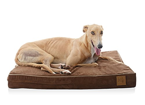 Laifug Solid Memory Foam Orthopedic Pet/Dog Bed with Removable Waterproof Cover