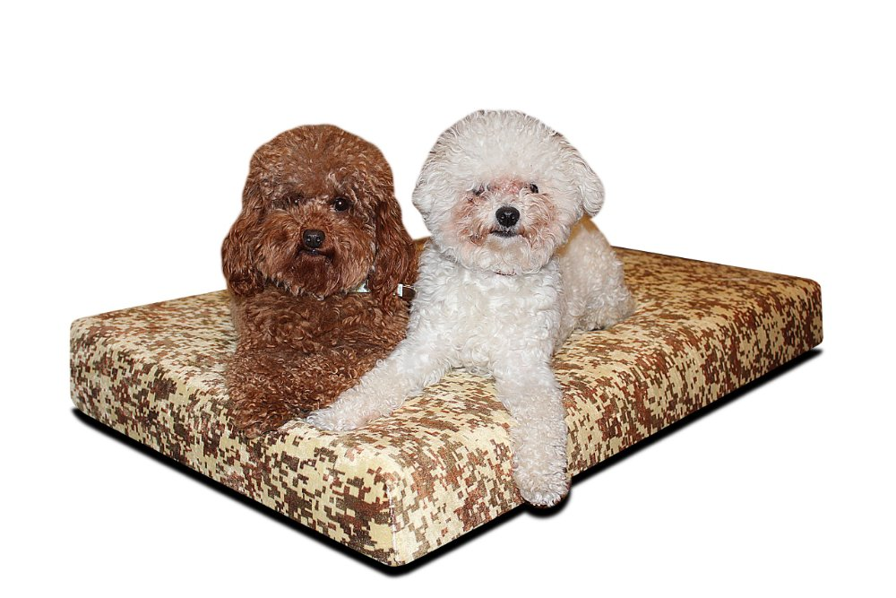 Brentwood 4-Inch Gel Memory Foam Orthopedic Dog Bed, 100-Percent Waterproof